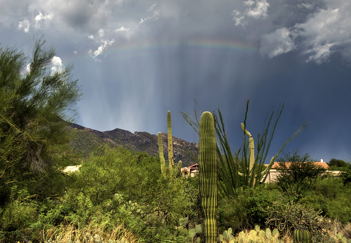 Eliot-Herman-Rainbow-and-anticrepuscular-ray-during-monsoon-sw_1440341269